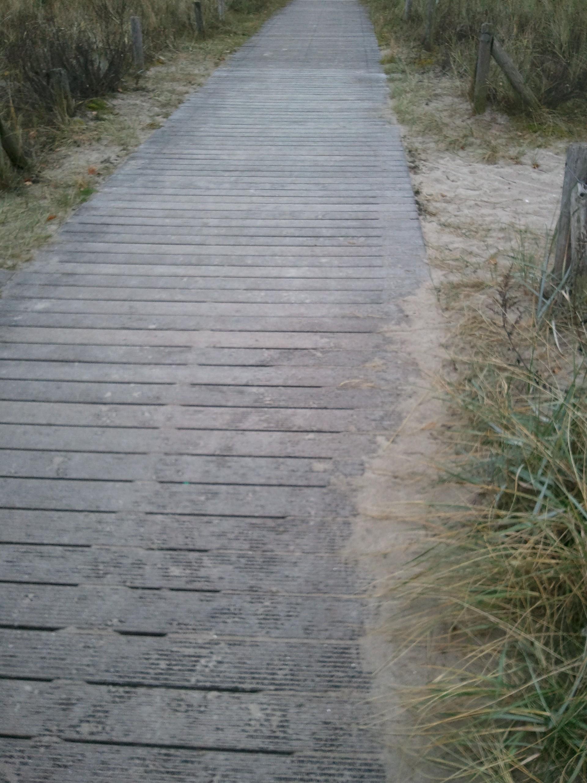 Dielenweg durch Sand und Dünen