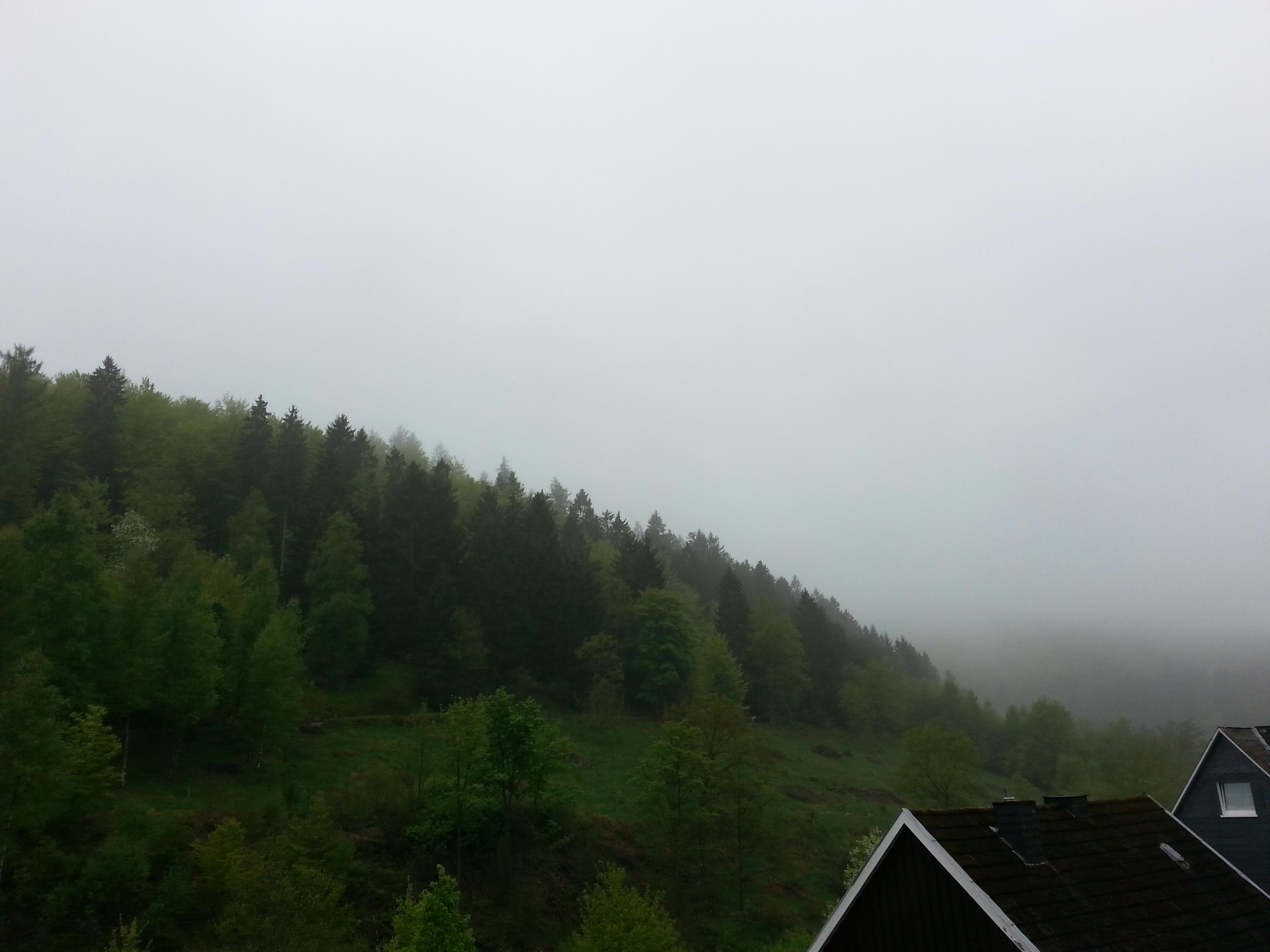 Landschaft im Sauerland